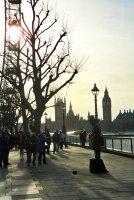 Заслепение по лондонски; comments:3