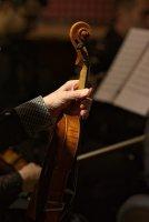 Цигулката ; Коментари:3