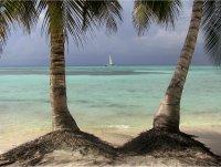 Остров Саона ; Коментари:12