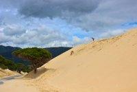 Пясъчни дюни в Тарифа (Испания) ; Коментари:5