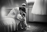 Bride and her dog ; Коментари:10
