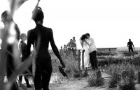 ... white, black and mud... ; Коментари:5