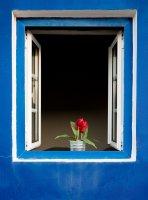 Прозорец в Португалия ; Коментари:2
