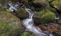 Владайска Река ; Коментари:8