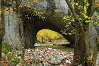 река Белица ; Коментари:6