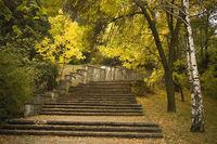 Есен по пътеката на здравето в Силистра; comments:32
