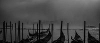 Foggy Venice; comments:8