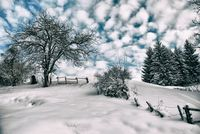 Снежно сбогуване; comments:12