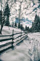В снега; comments:10