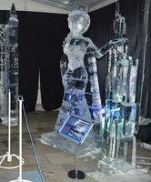 Ледено скулптиране; Коментари:2