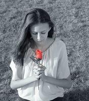 Дамата с розата; No comments