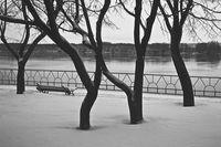 Тих бял Дунав.Преди да замръзне.; comments:36