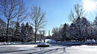 Зима в парка; comments:8