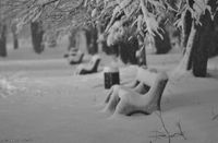 winter; comments:5