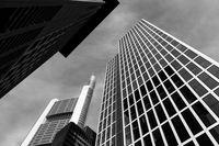Skyscraper; comments:7