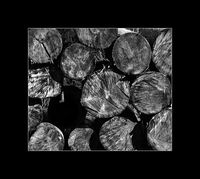 no name ( ID=2041423 ); comments:4