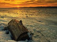 Река Дунав застинала в лед. Това е нещо, което не може да се види всеки ден.; comments:9