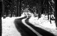 Пътят; comments:8