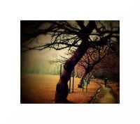есен; comments:6