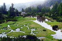 Най-долното от Къркъмските езера в Пирин; comments:7