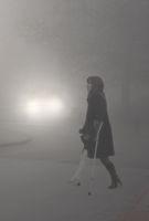В мъглата 2; comments:6