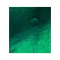 абсурден медузиален минимализъм; comments:18
