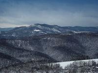 Зимно от Балкана; comments:35