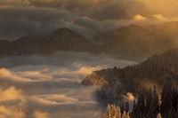 Родопа - Планина с душа!; comments:25