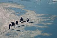 Особености на зимния риболов; comments:9