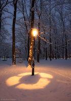 Зимен фенер; Коментари:2