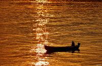 златната река; comments:12
