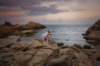 Терчона и морето; comments:2