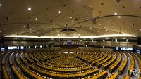 Европейския парламент; Коментари:3