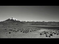 Laguna Miscanti, Atacama; comments:12