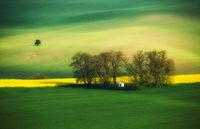 Параклис в полето; comments:13