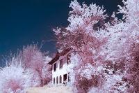 Стара къща в село Шодековци,IR 720 Nm; comments:4