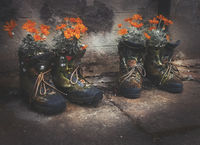 Обувки; comments:7