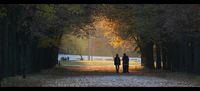 Парк Марица, Димитровград; comments:4