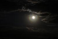 Погледът на нощта; comments:20