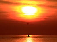 Пътят към слънцето; comments:4