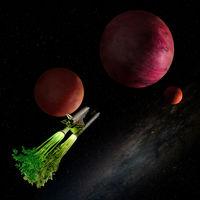 Вегетарианци в космоса; comments:17