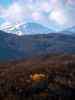 Есен...; comments:5