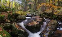 Есен...; comments:22