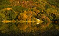 Панчаревска есен; comments:5