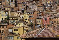 ...цветовете на Тоскана...; comments:6