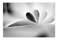 no name ( ID=2120157 ); comments:11