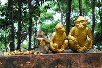 Хълмът на маймуните, Пукет; Коментари:1