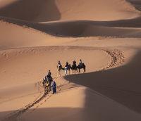 Някъде в пустинята; comments:9