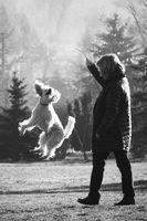 Скокът; comments:9