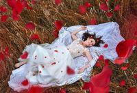 Beauti Wedding Flowers; comments:3